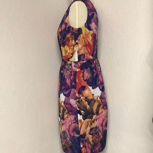 Ellen Tracy Dresses - Ellen Tracy Floral Dress Fully Lined size 6